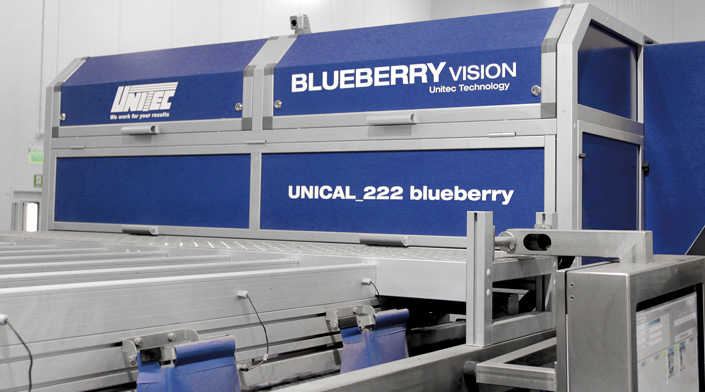 Classificazione dei Mirtilli, totalmente automatica con Blueberry Vision